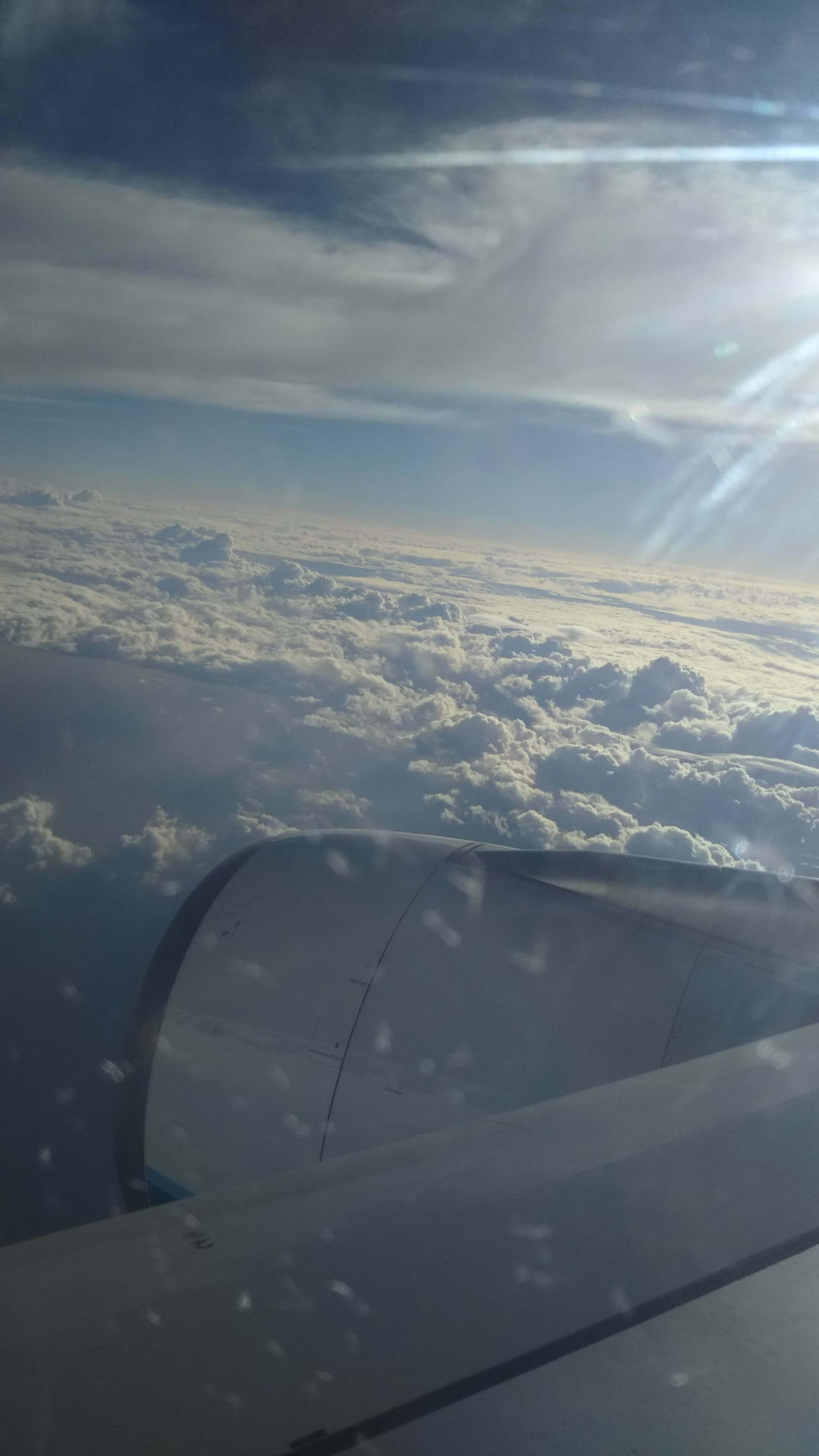 最終日の飛行機から外の写真・雲の海である